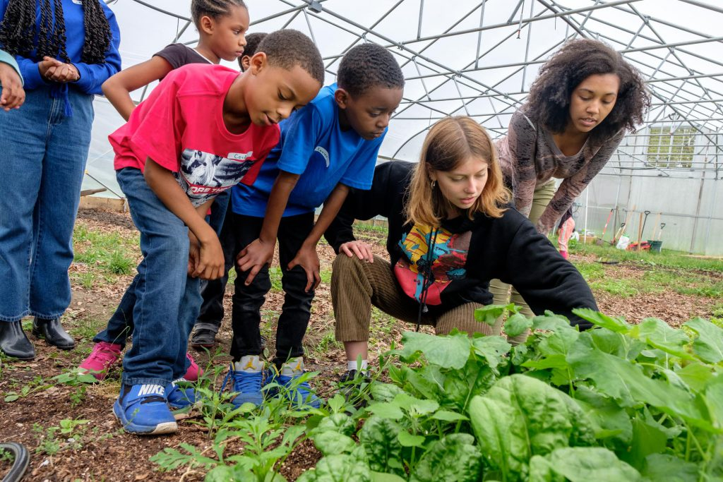 School children examine greens growing in the Hoop House